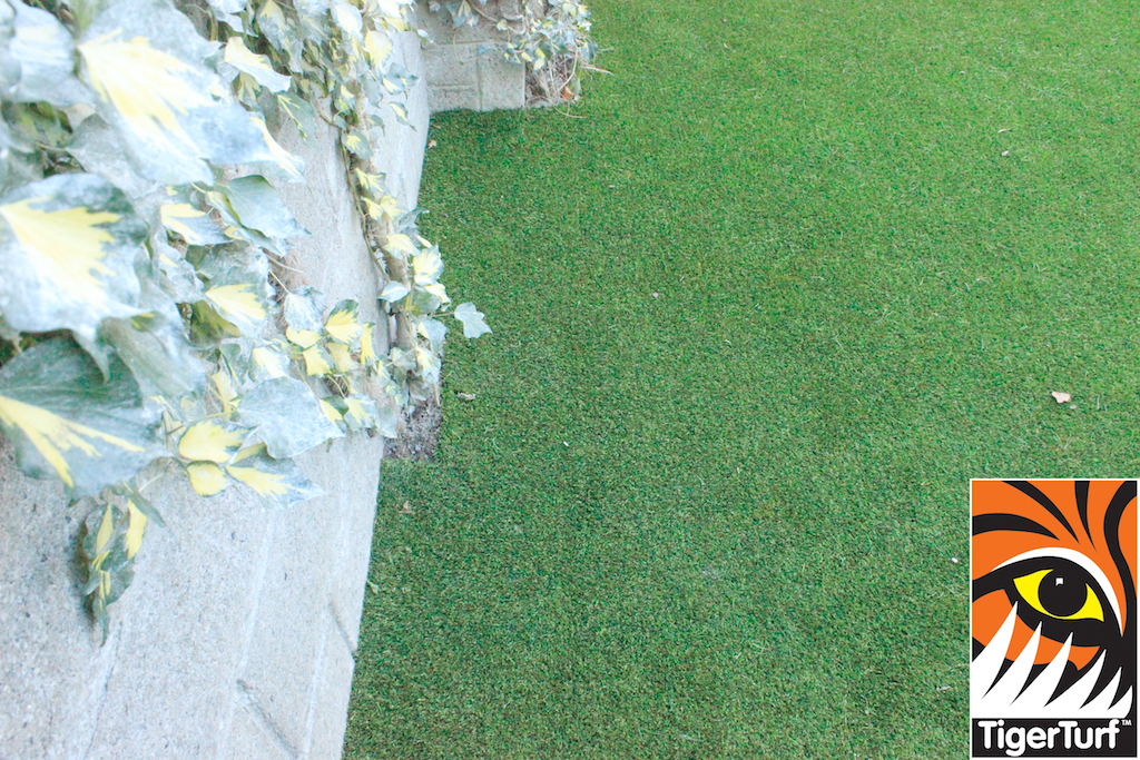 synthetic lawn and ivy