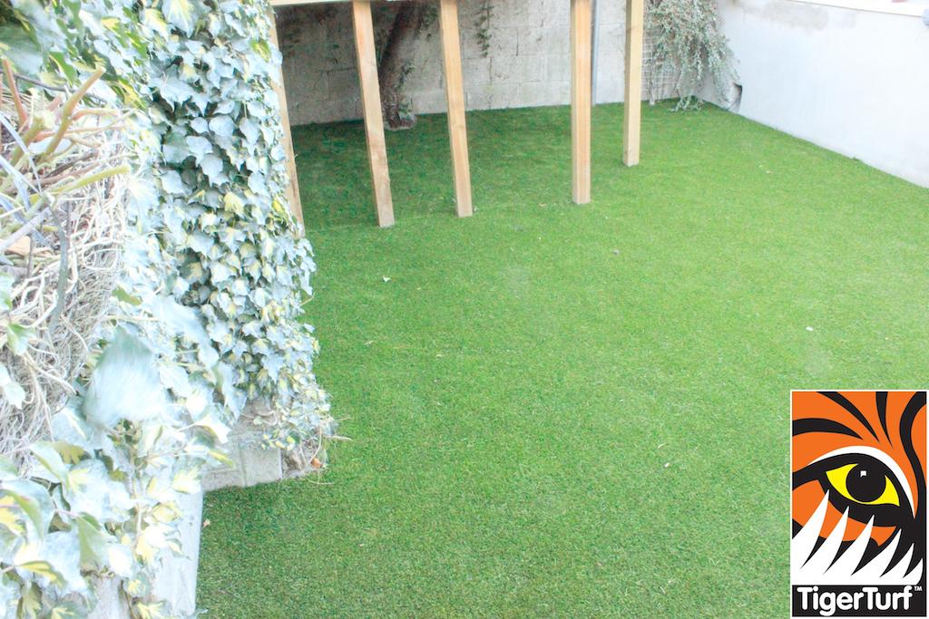 synthetic grass in family garden 11.jpg