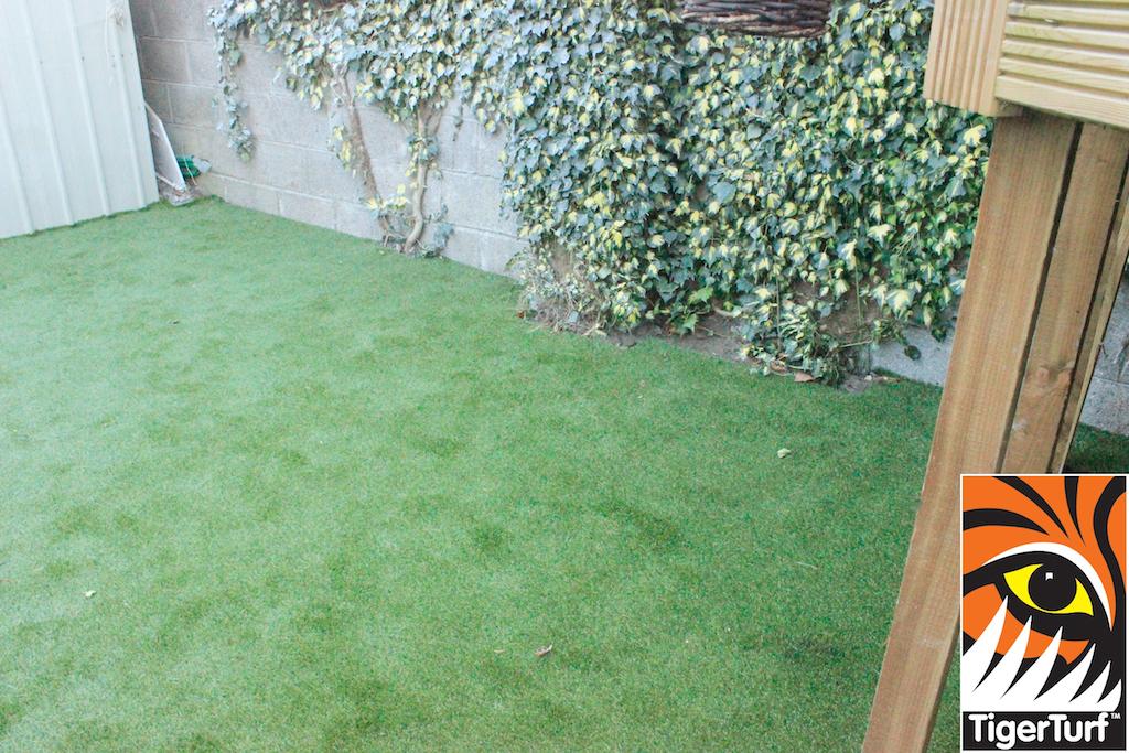 synthetic grass in family garden 26.jpg