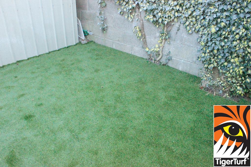 synthetic grass in family garden 28.jpg