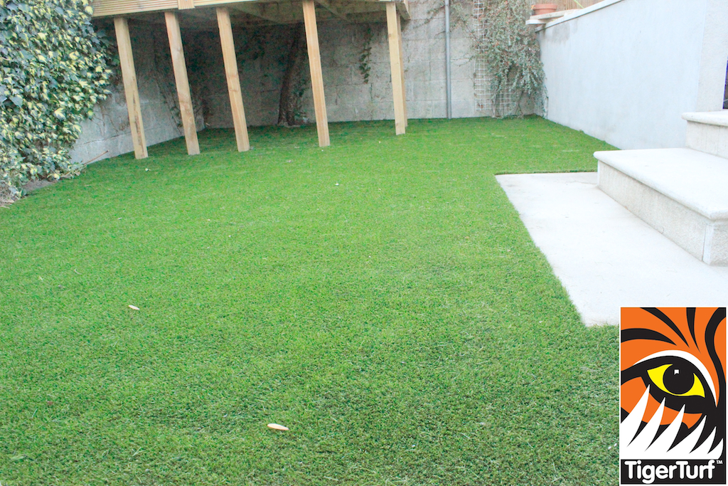 synthetic grass in family garden 37.jpg