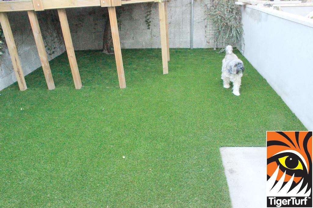synthetic grass in family garden 21.jpg