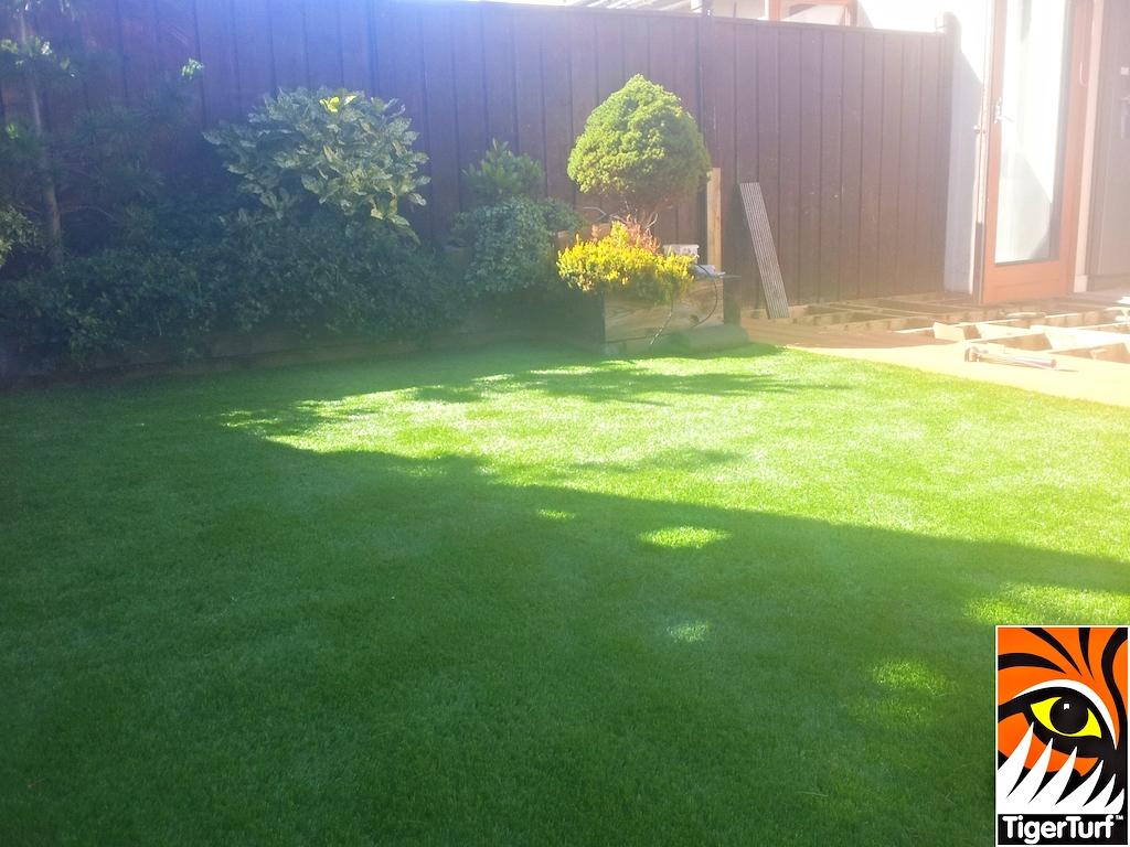 synthetic grass in family garden 6.jpg
