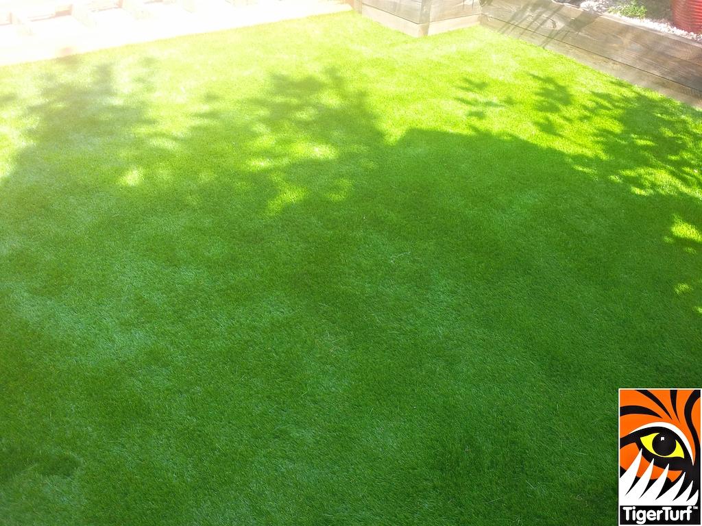 synthetic grass in family garden 9.jpg