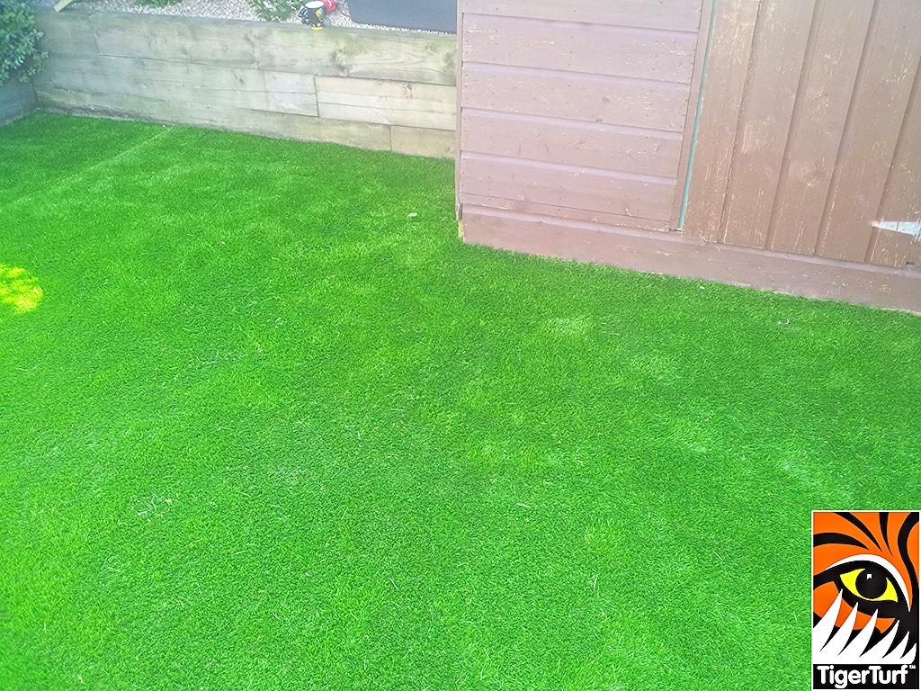 synthetic grass in family garden 10.jpg