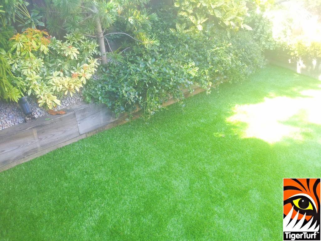 synthetic grass in family garden 2 (1).jpg