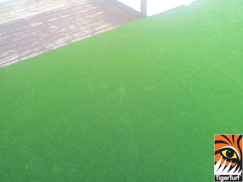 synthetic grass in family garden 6 (1).jpg