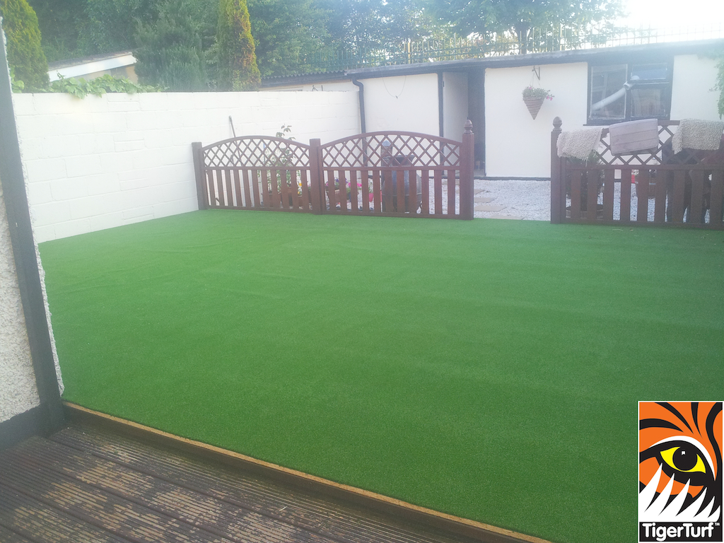synthetic grass in family garden 5.jpg