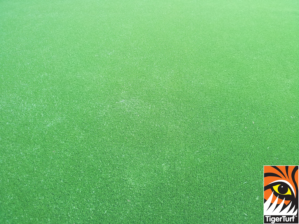 synthetic grass in family garden 16.jpg
