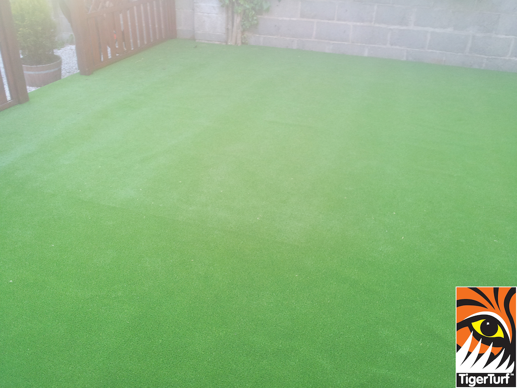 synthetic grass in family garden 5 (1).jpg