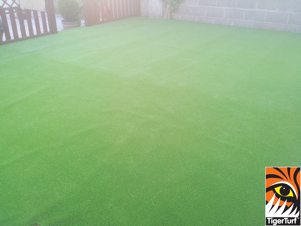 synthetic grass in family garden 2 (1).jpg