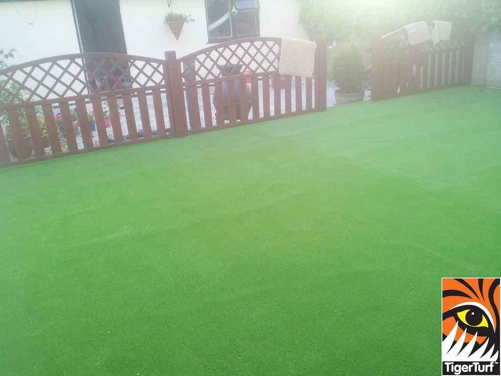 synthetic grass in family garden 4 (1).jpg