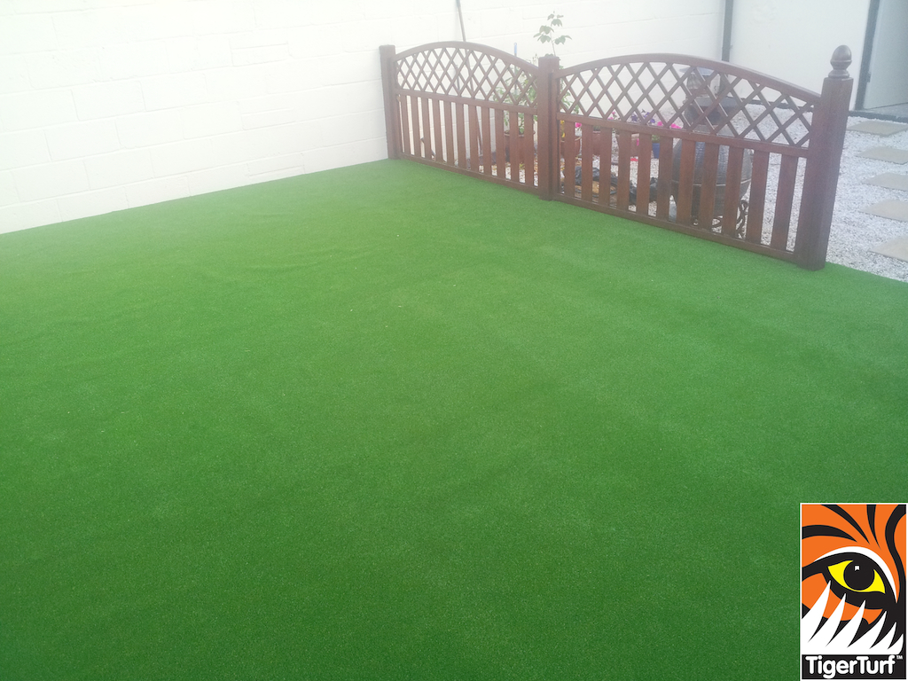 synthetic grass in family garden 8 (1).jpg