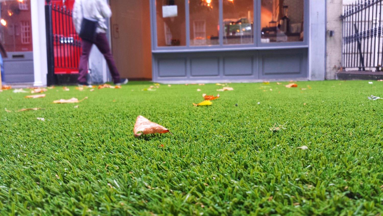 Podmore grass