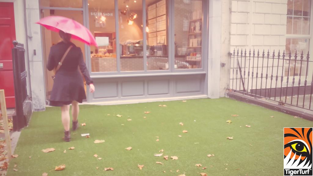 synthetic grass dublin cafe 10.jpg