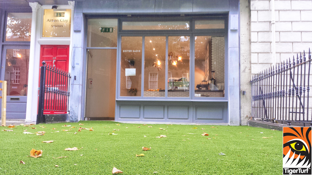 synthetic grass dublin cafe 12 (1).jpg