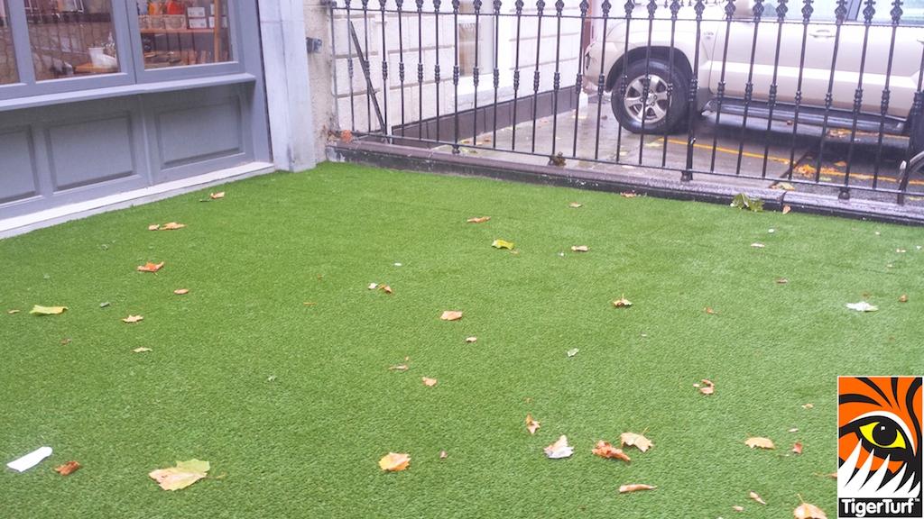 synthetic grass dublin cafe 1.jpg