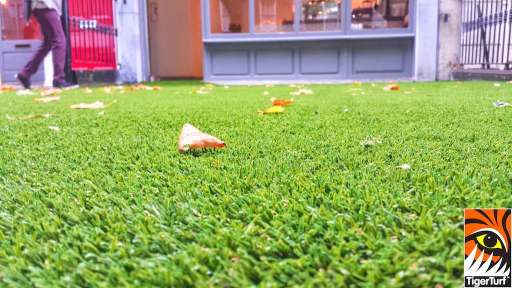 synthetic grass dublin cafe 16.jpg