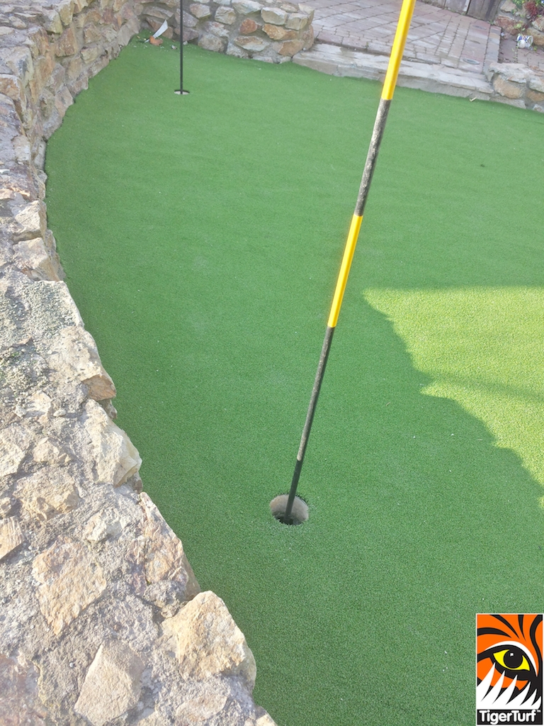 synthetic golf green