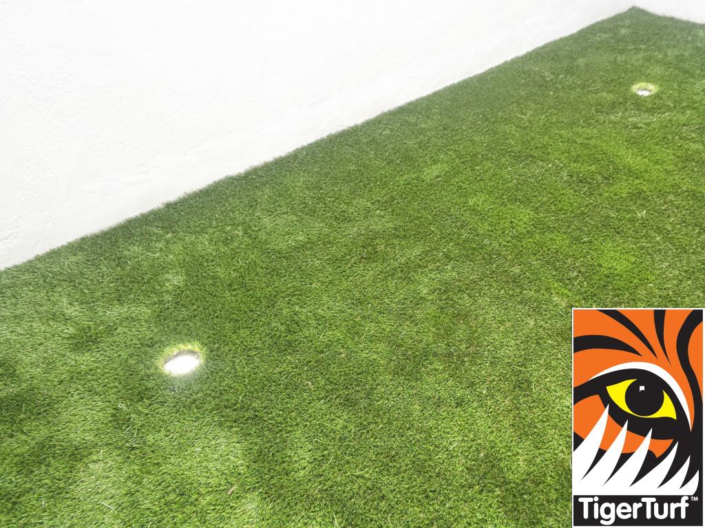 Synthetic grass on Balcony 3.jpg