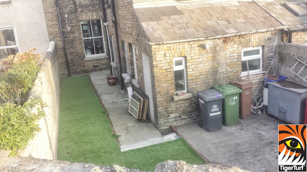 back garden lawn