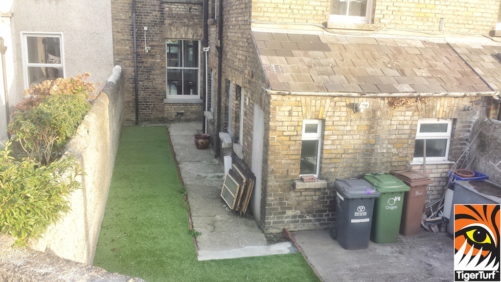back garden in new grass