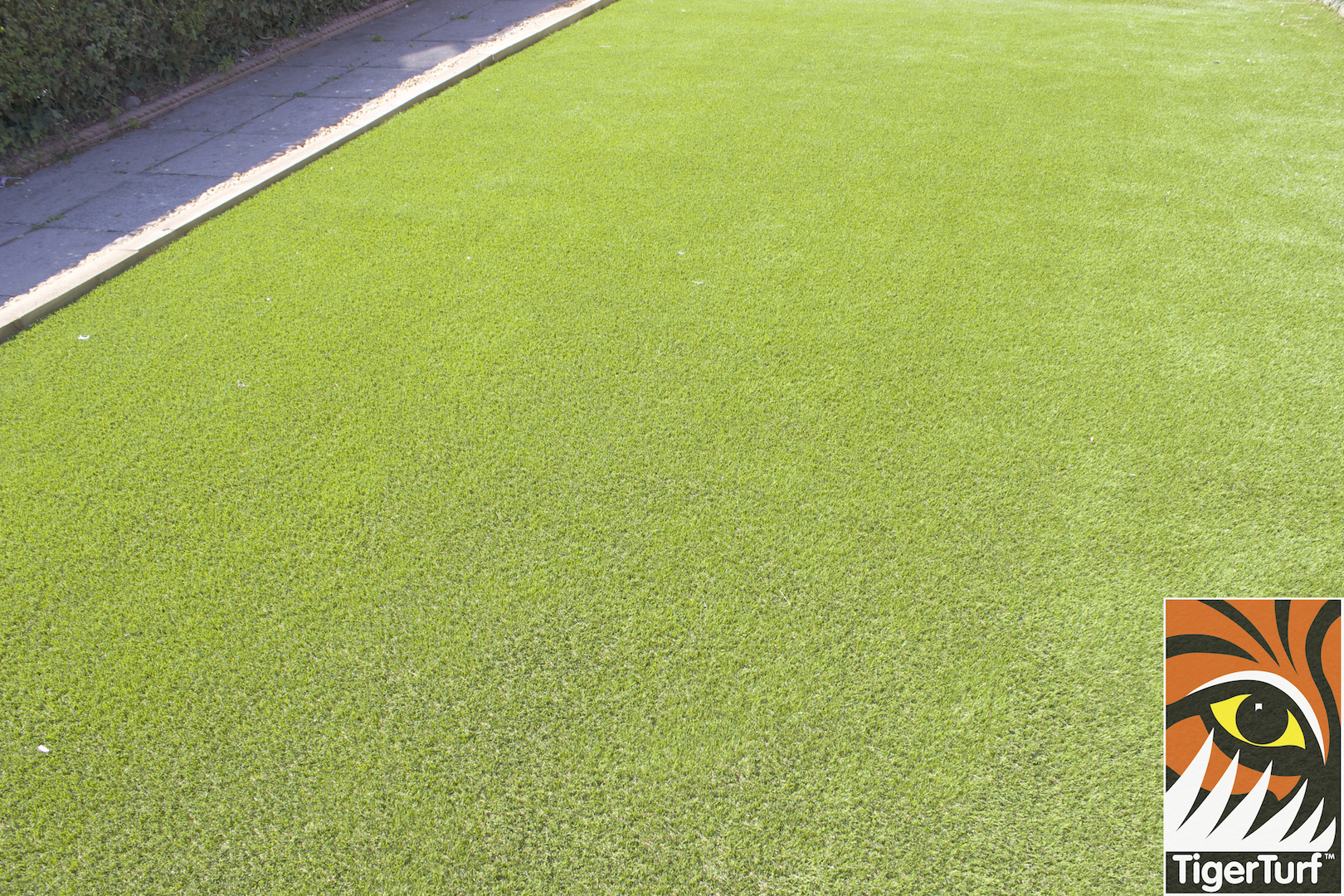 TigerTurf Finesse Deluxe lawn