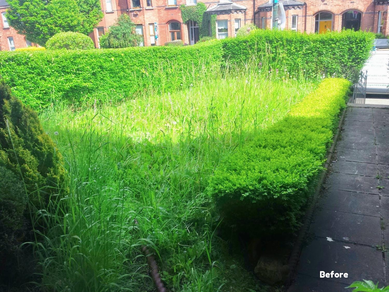 garden before turf installation