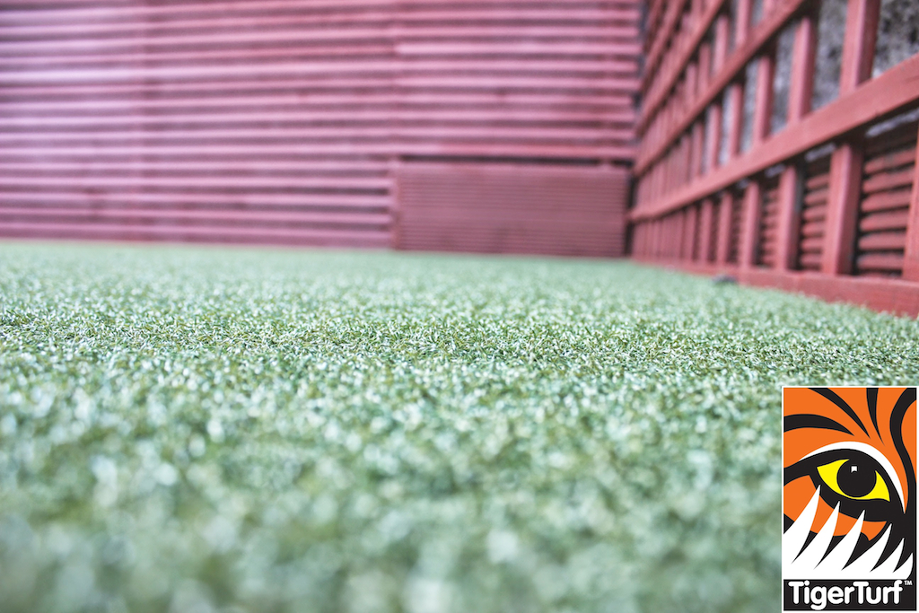 Synthetic grass in front lawn 46.jpg