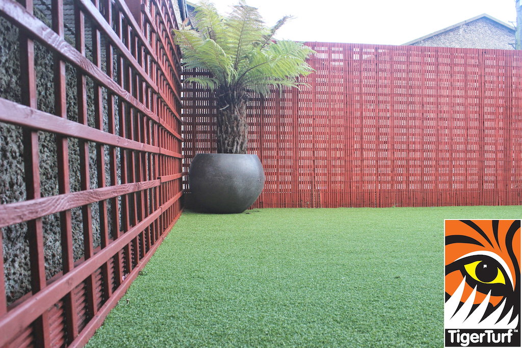 Synthetic grass in front lawn 109.jpg