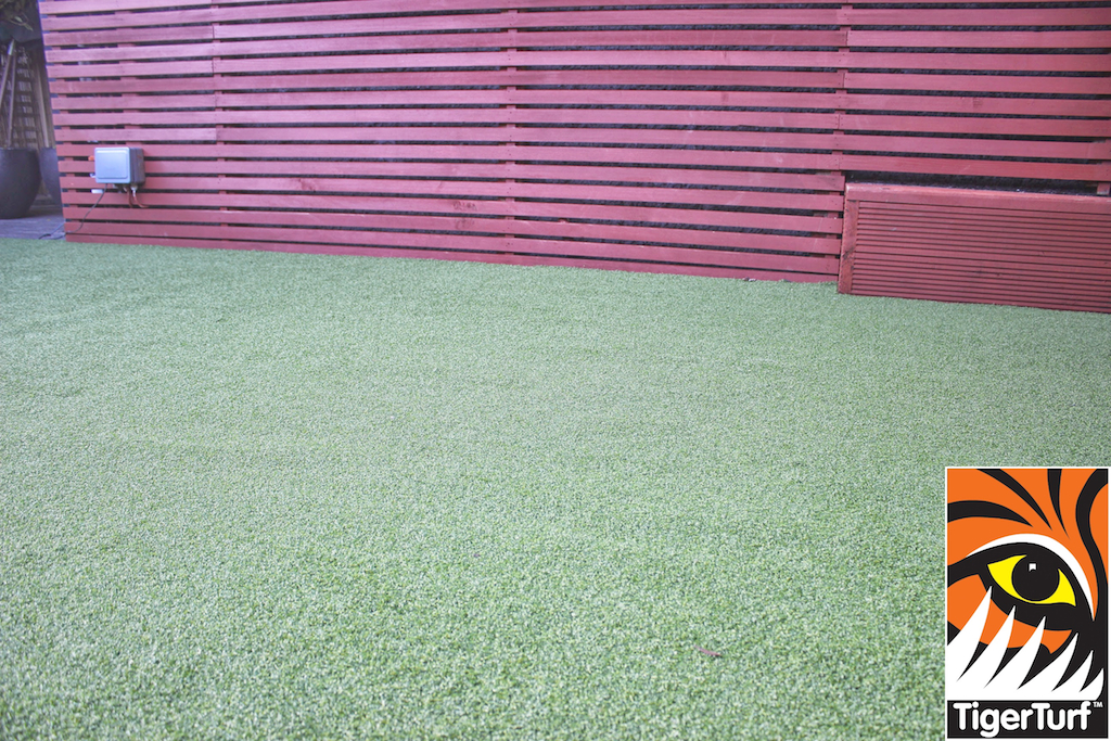 Synthetic grass in front lawn 58.jpg