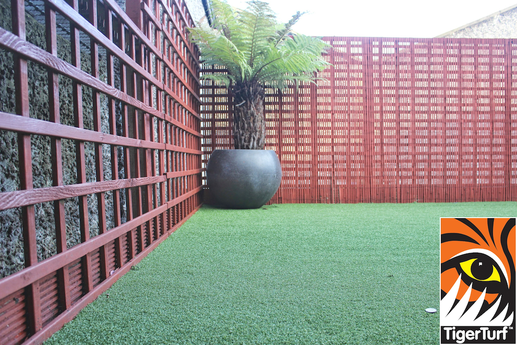 Synthetic grass in front lawn 100.jpg