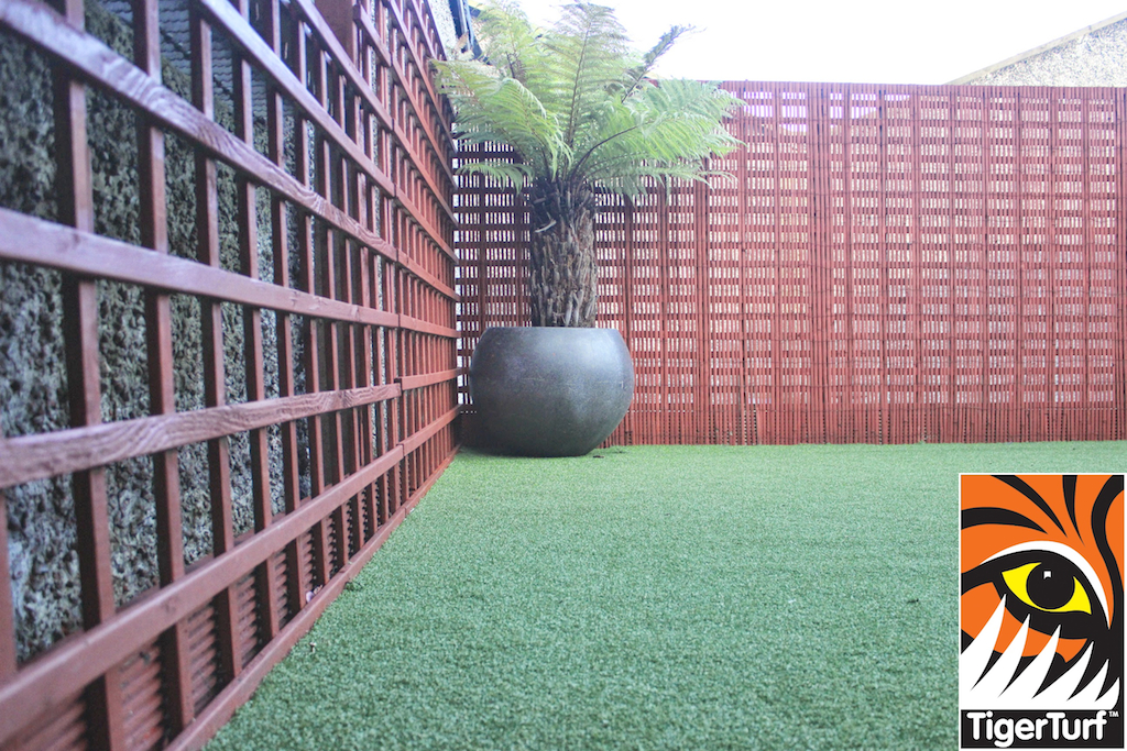 Synthetic grass in front lawn 104.jpg