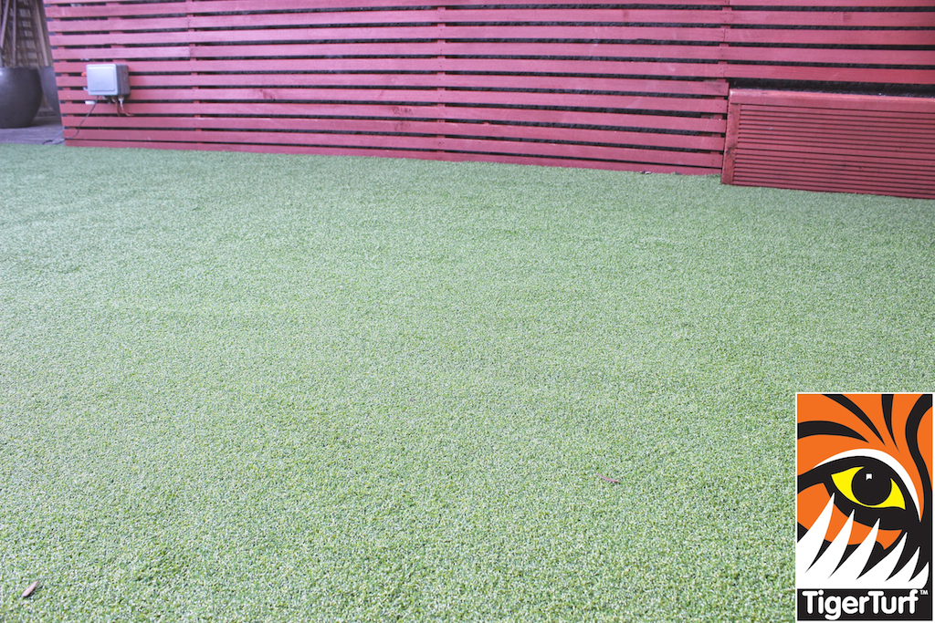 Synthetic grass in front lawn 55.jpg