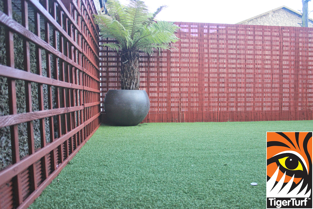 Synthetic grass in front lawn 105.jpg