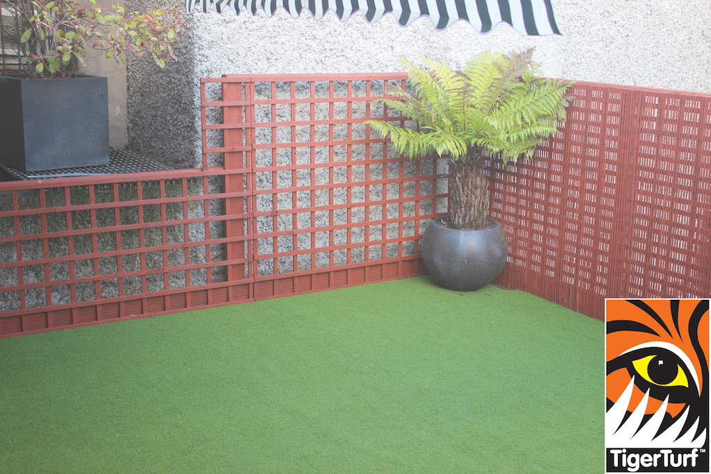 Synthetic grass in front lawn 30.jpg