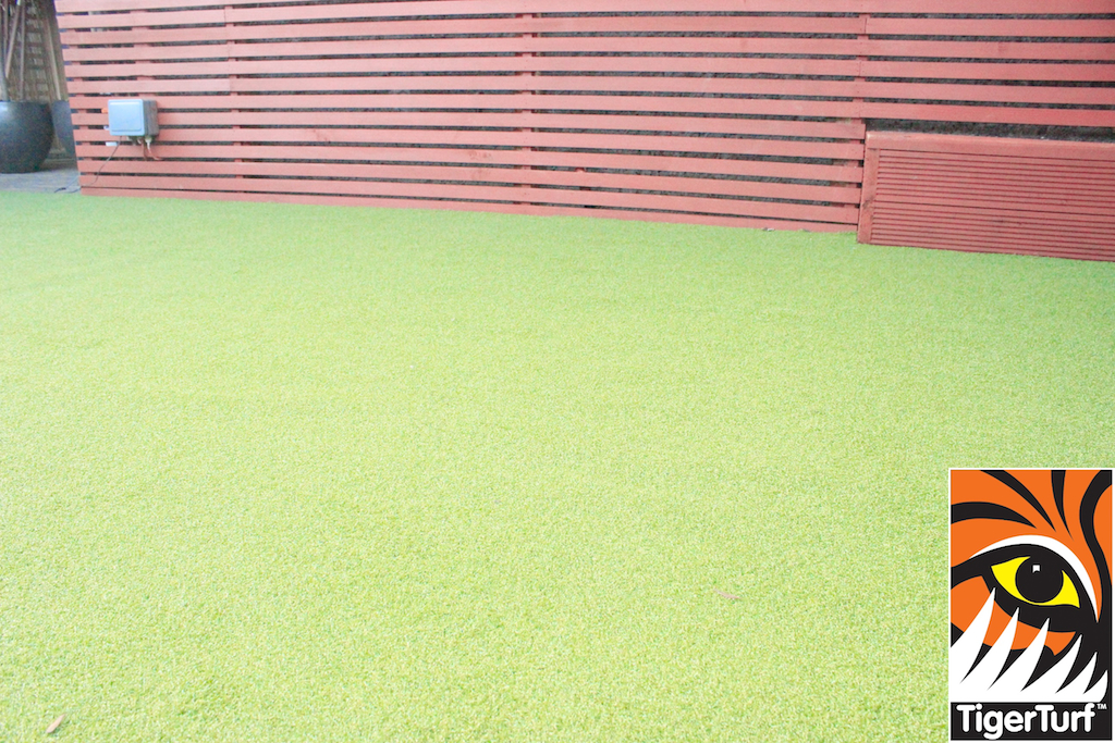 Synthetic grass in front lawn 62.jpg