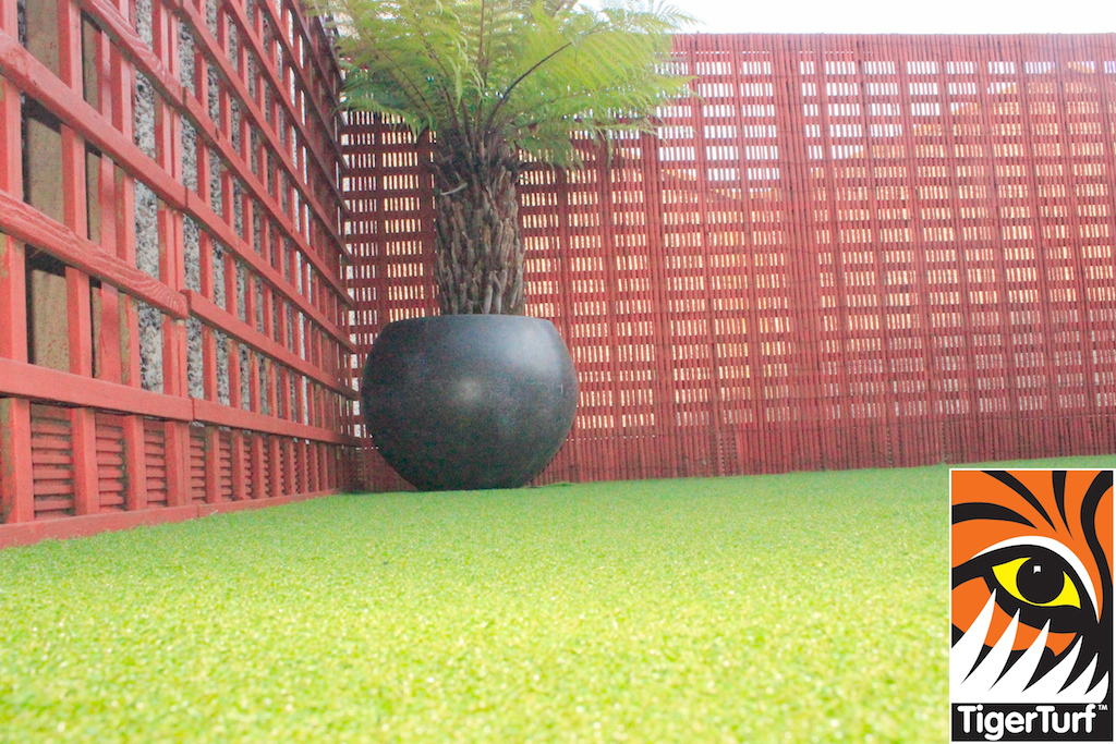 Synthetic grass in front lawn 75.jpg