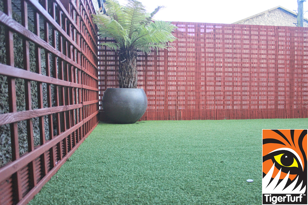 Synthetic grass in front lawn 106.jpg