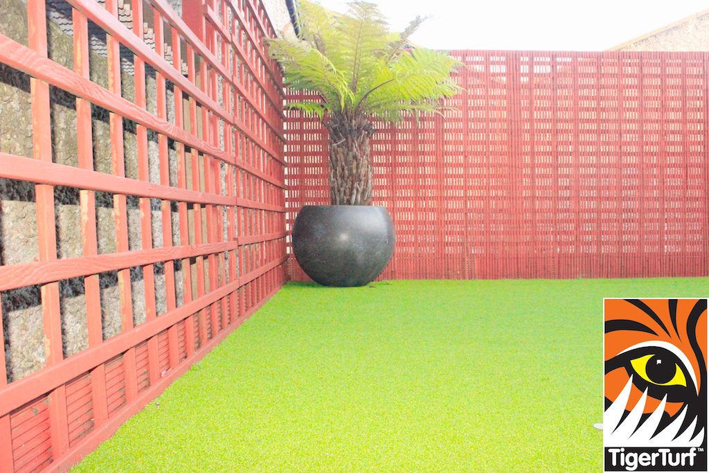 Synthetic grass in front lawn 92.jpg