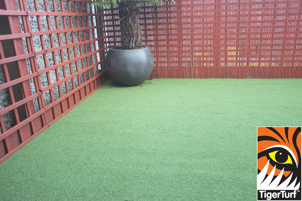 Synthetic grass in front lawn 113.jpg