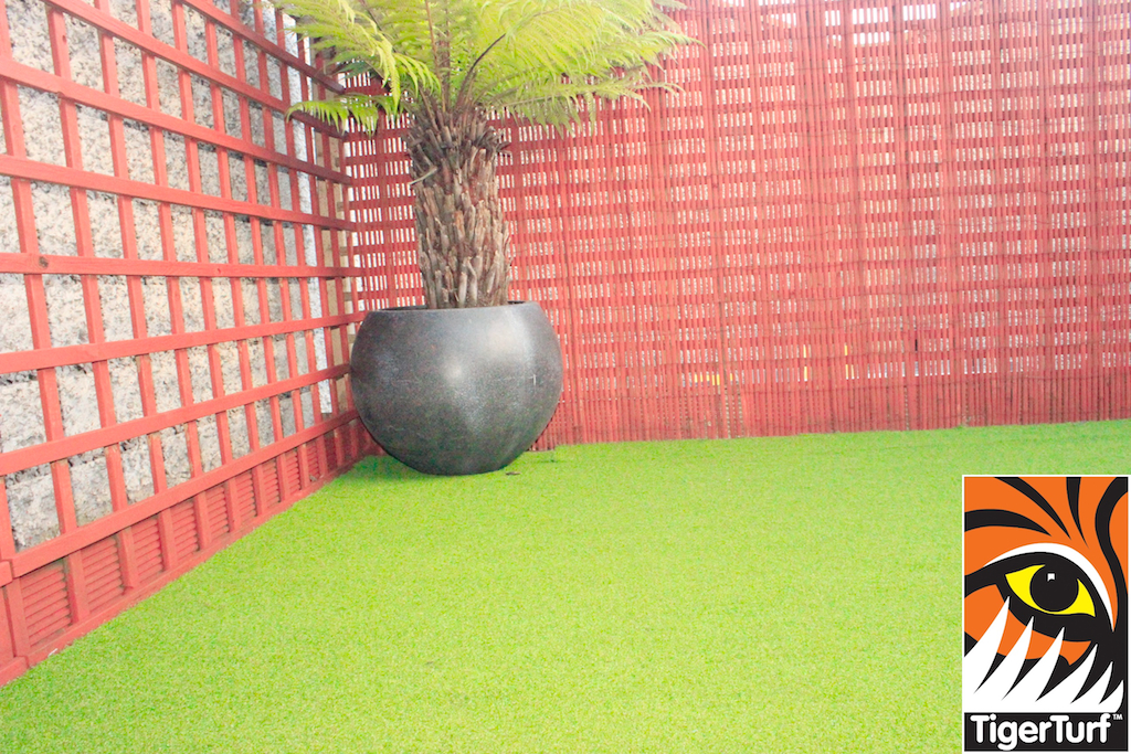 Synthetic grass in front lawn 70.jpg