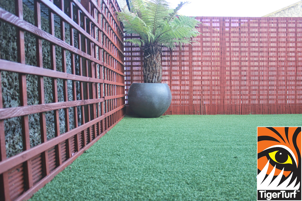 Synthetic grass in front lawn 91.jpg