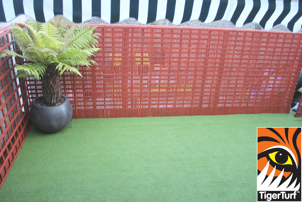Synthetic grass in front lawn 115.jpg