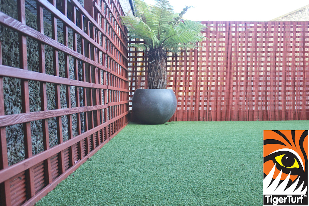Synthetic grass in front lawn 96.jpg