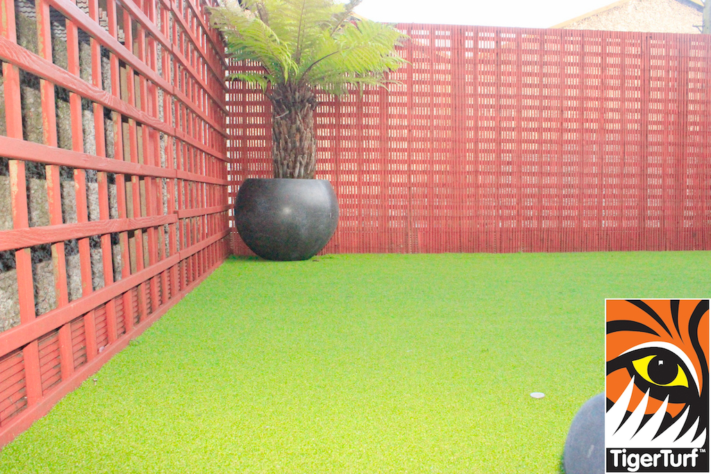 Synthetic grass in front lawn 94.jpg