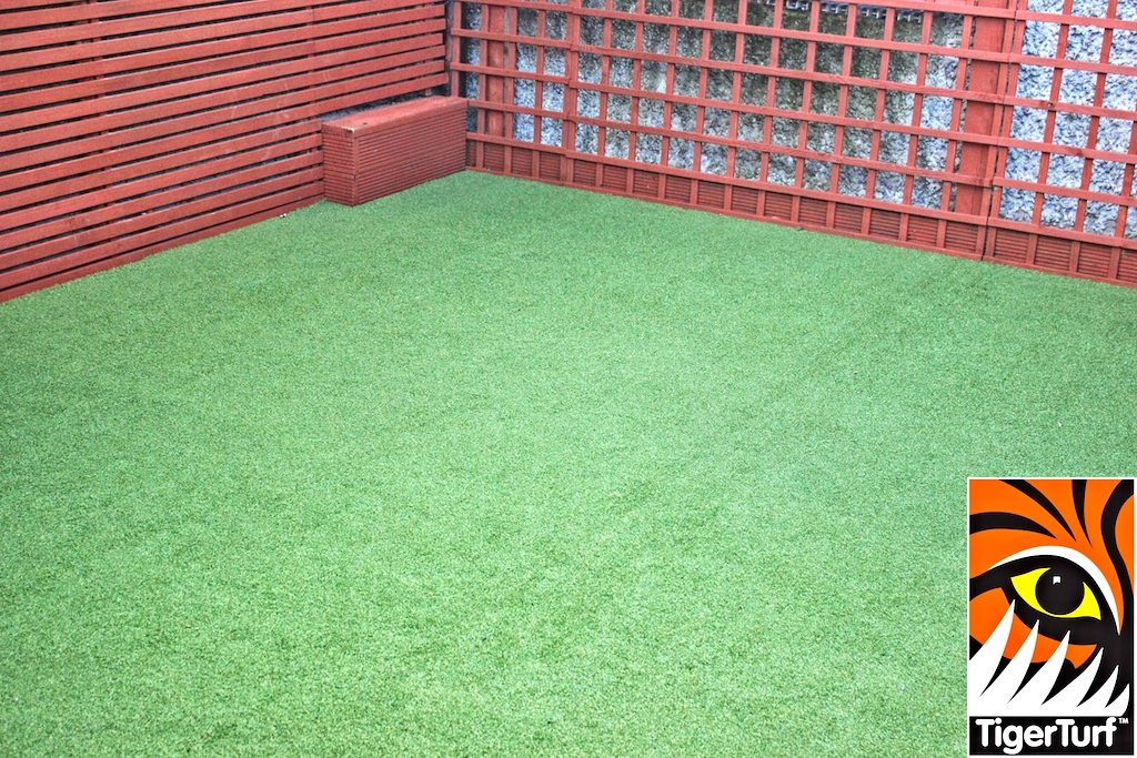 Synthetic grass in front lawn 9.jpg