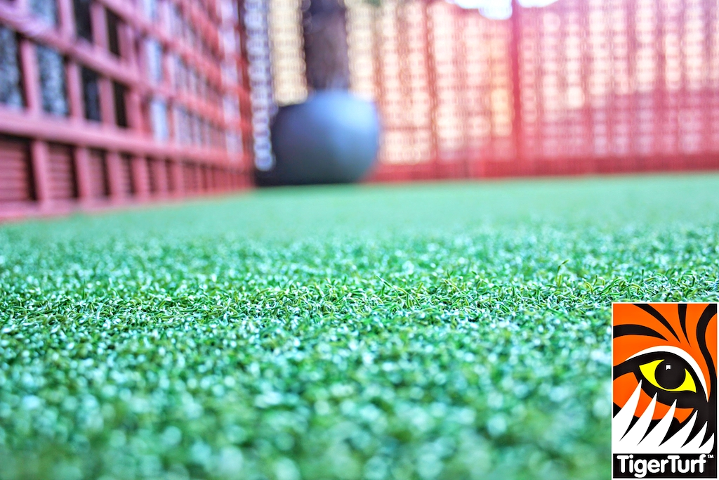 Synthetic grass in front lawn 82.jpg