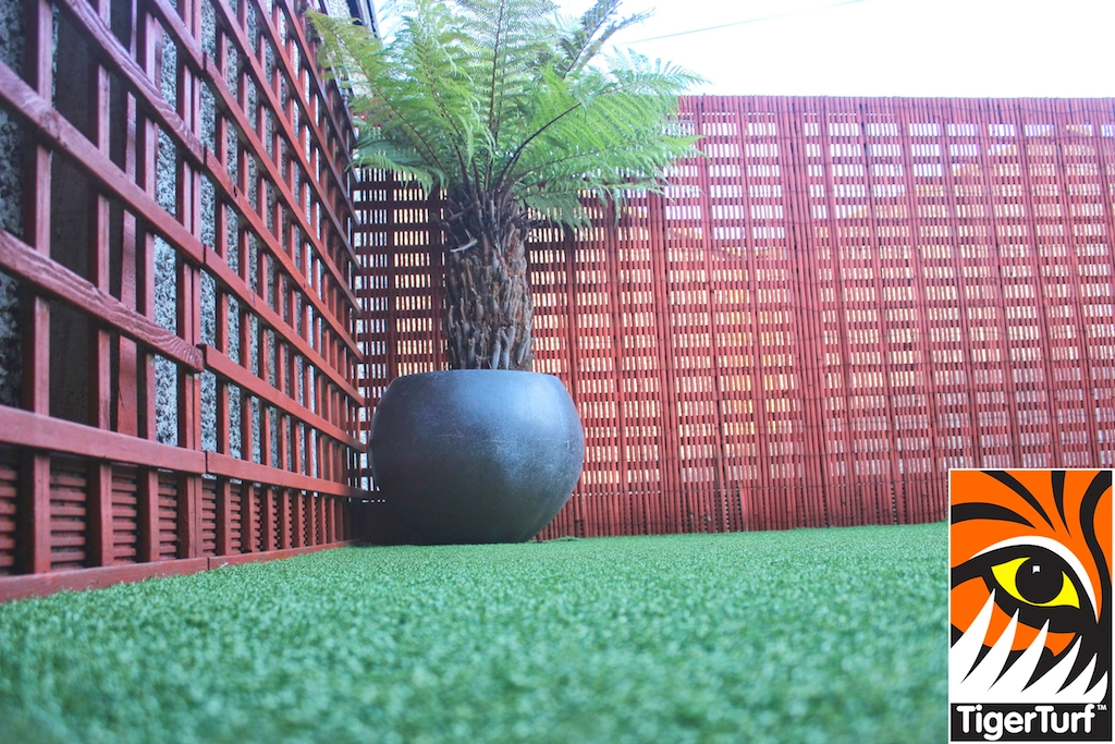 Synthetic grass in front lawn 78.jpg