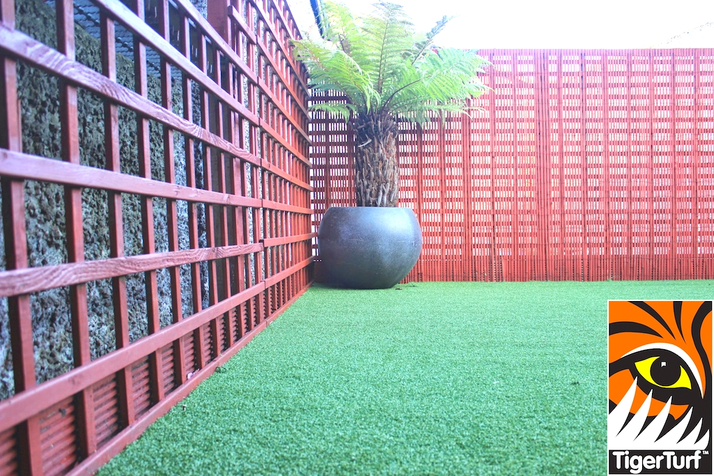 Synthetic grass in front lawn 89.jpg